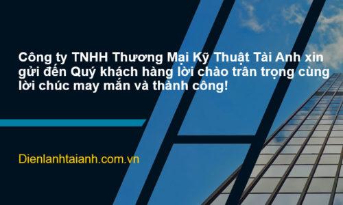 Tìm hiểu về Công ty TNHH Thương Mại Kỹ Thuật Tài Anh